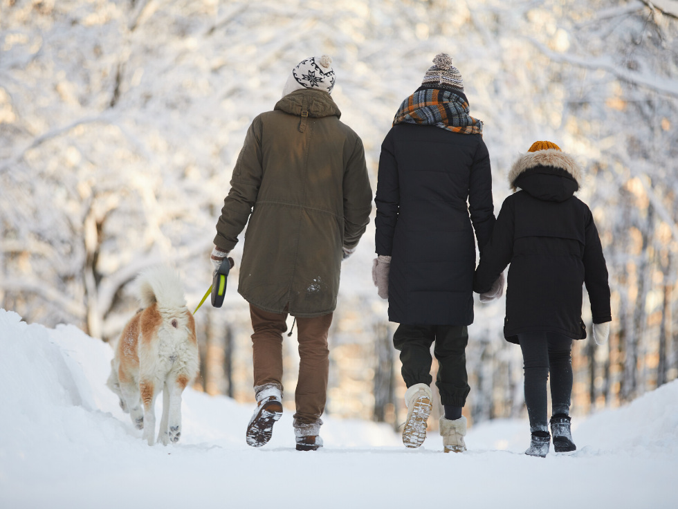 Family walking their dog in the snow at The Canyons in Castle Pines, CO