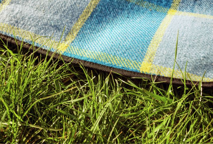 A picnic blanket on the grass | Commons Park at The Canyons | A new home community in Castle Pines, CO